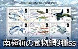 南極海の食物網9種シート