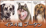 イヌ4種 ブータン