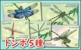 トンボ5種